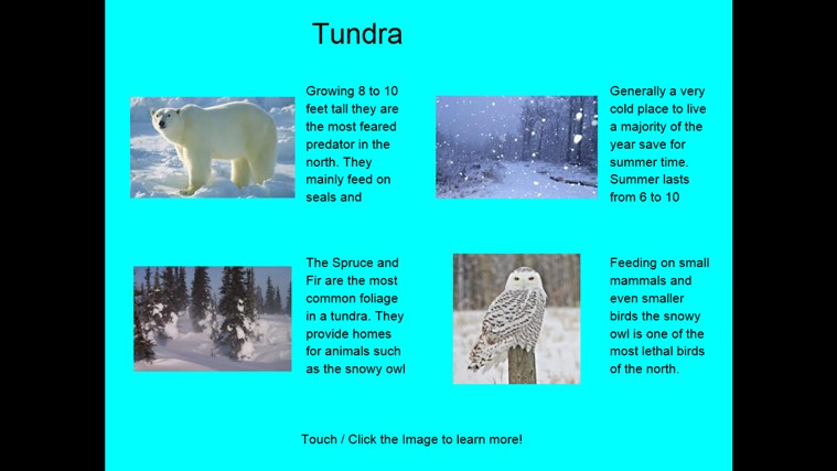 Arctic Tundra Biome on Arctic Ecosystem
