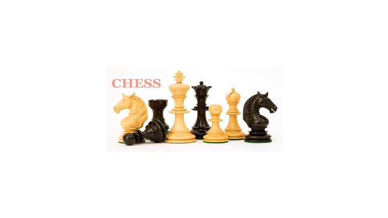 Chess info dvd playing