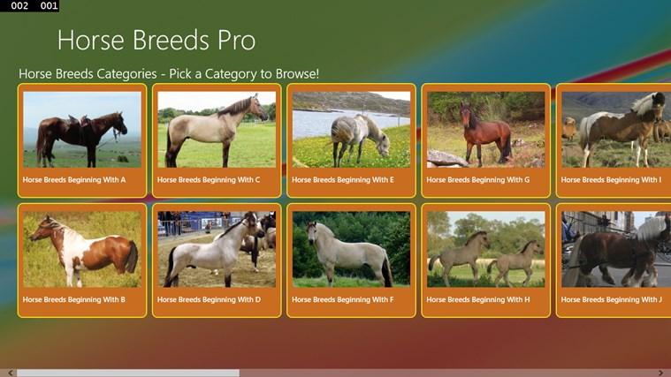 Horse Breeds Pro