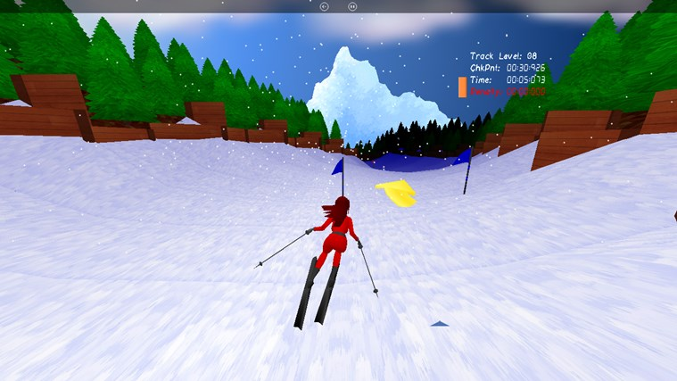 A Snowy Slalom