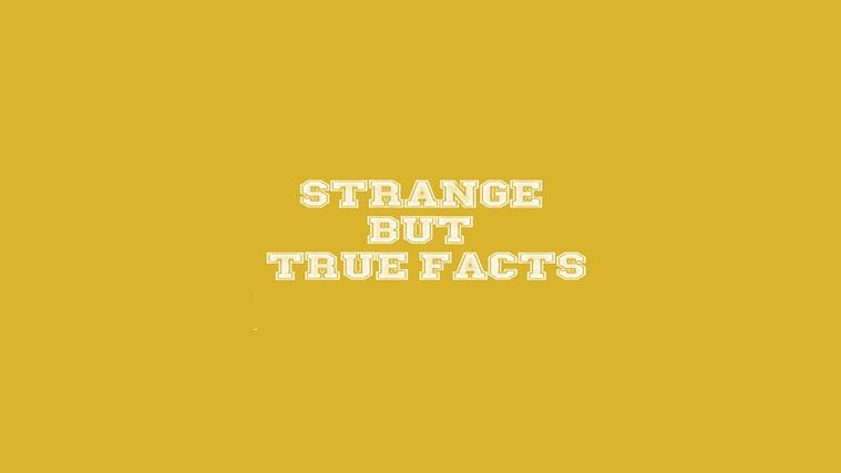 2199 1 strange but true facts 851a40a291a7