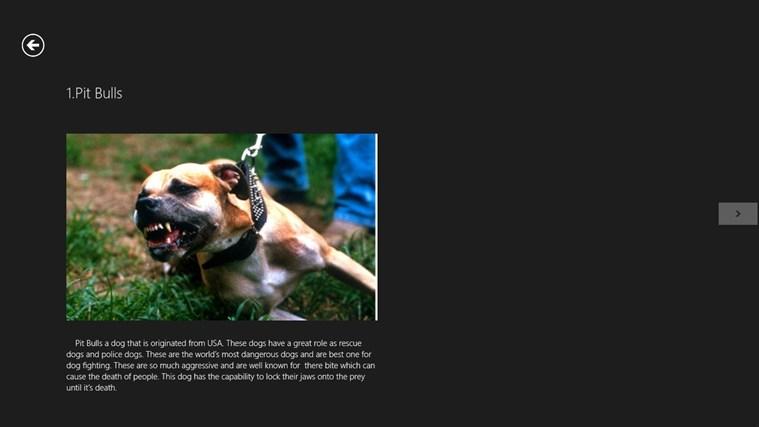 Screenshots top 10 most dangerous dogs