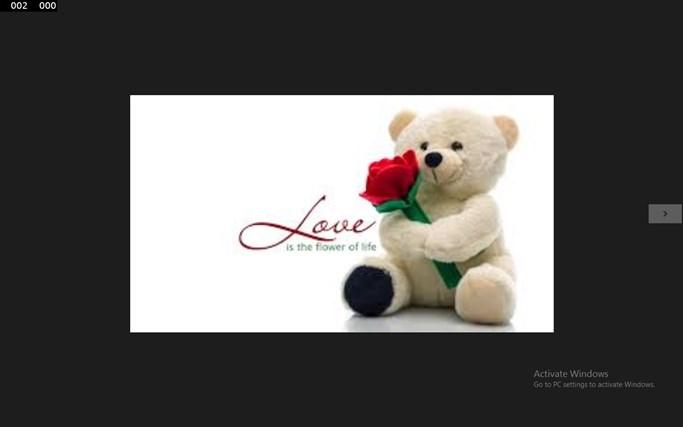 teddy bears pics
