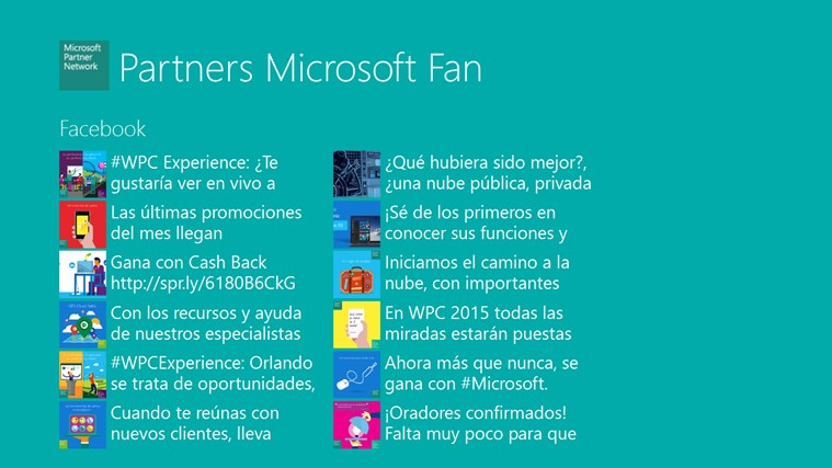 Microsoft Partner Fan