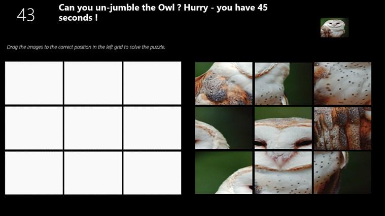 Owl Puzzle puzzle