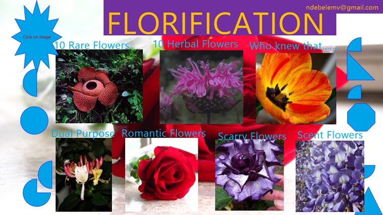 Florification flowers