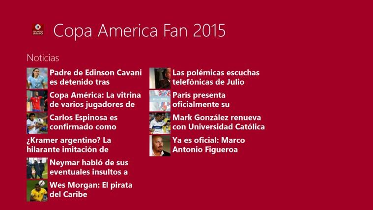 Copa America Fan Chile 2015