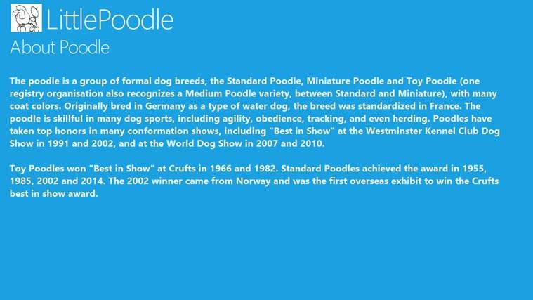 LittlePoodle