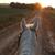 Live, Ride, Sparkle! - Horse Videos