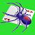 *Spider Solitaire
